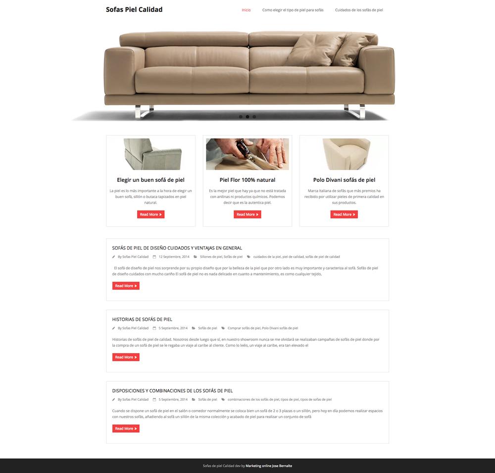 Desarrollo de blog para Sofas piel de calidad Valencia