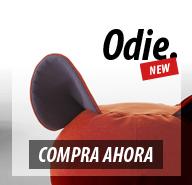 Diseño de banner de promoción de producto Odie