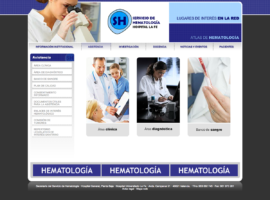 Programación Web Valencia Servicio Hematologia LaFe