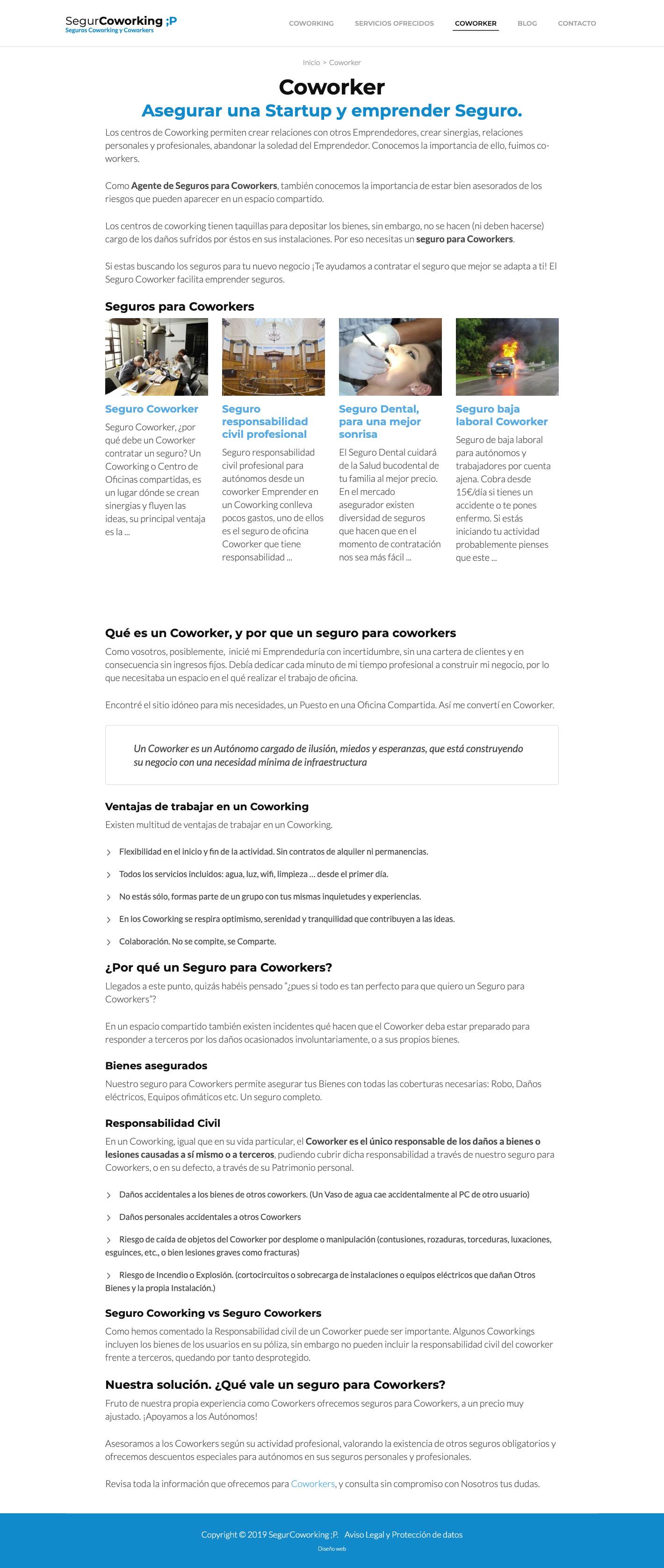 Diseño de una de las categorías de la página web